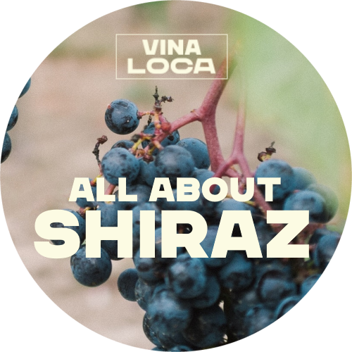 All About Shiraz logo